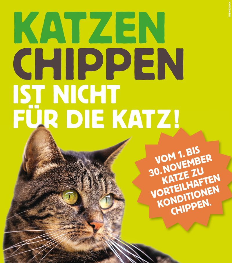 Aktion Katzen Chippen
